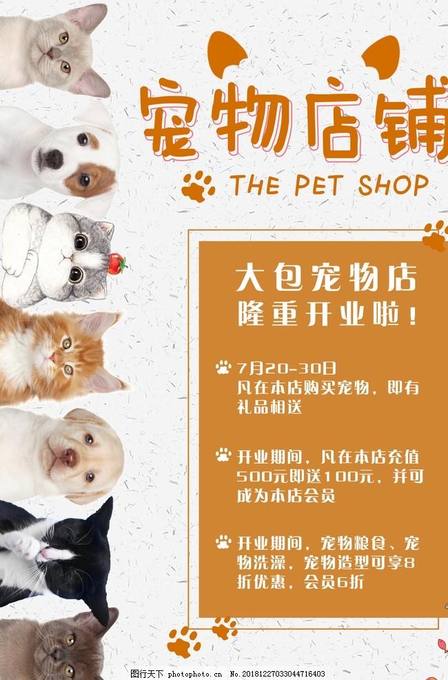宠物美容,宠物美容店,宠物店活动,开业活动,开业海报,宠物店海报,开业活动海报